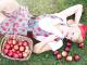 Anti Aging und die perfekte Hautpflege dank Apfelstammzelllen. So halten Sie IHre Haut ganz jung und frisch!